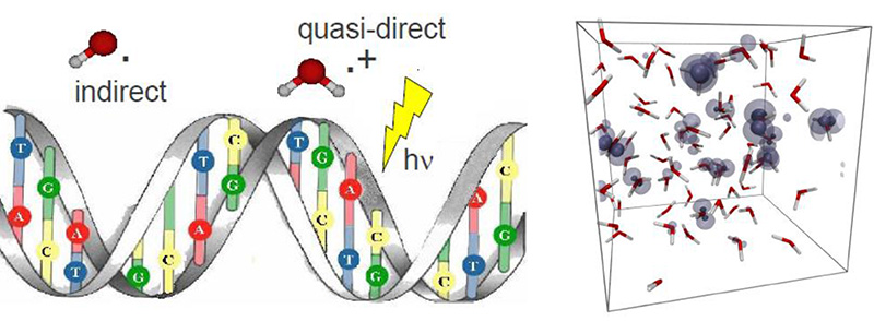 Solvated Electrons and Radiative DNA damage
